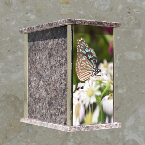 Paysage - Papillon